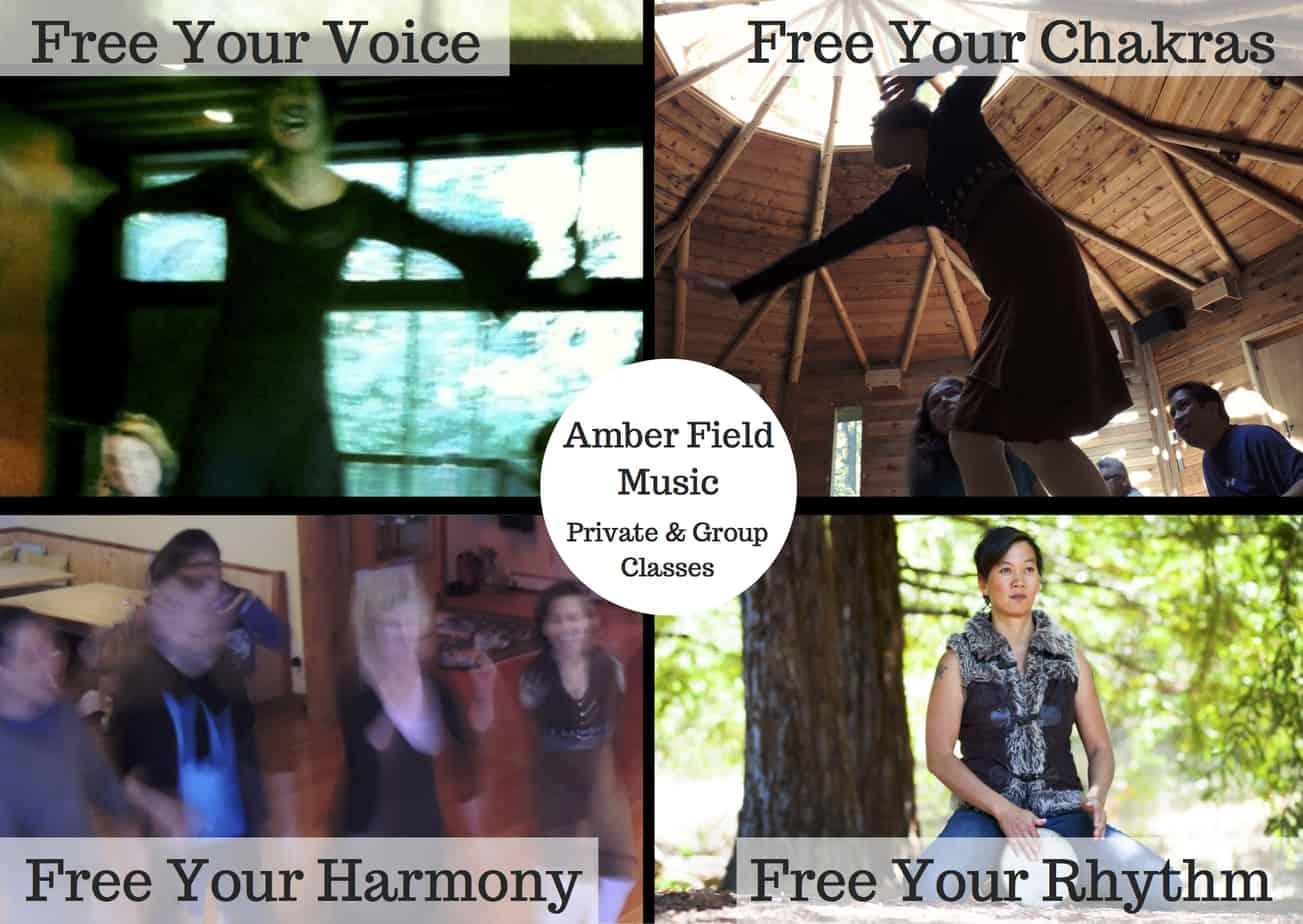 Voice, Didgeridoo, Djembe, Piano, Harmonium Private Lessons